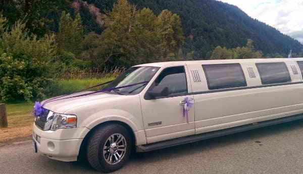Ford Expedition SUV Wedding Limo Service